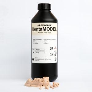 asiga dentamodel 3d druck modell drucken cadcam lösungen