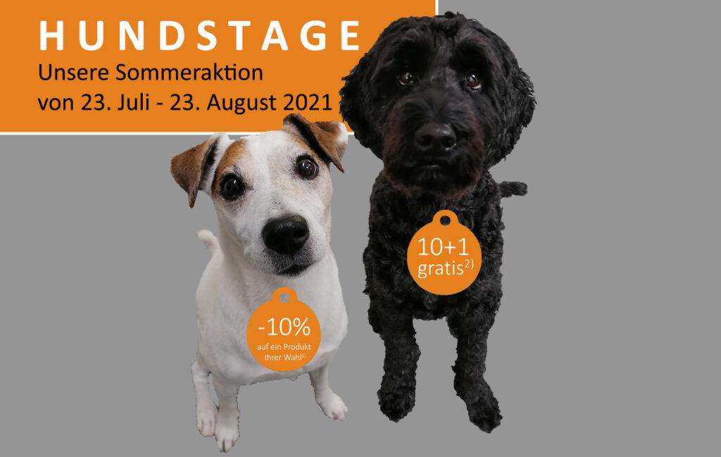 aktion hundstage 2021 cadcam loesungen kopie